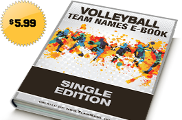 Volleyball Team Names