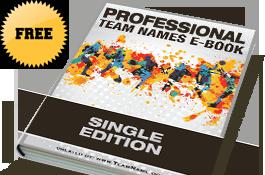 Professional Team Names
