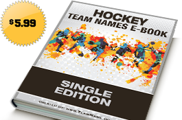 Broom Hockey Team Names